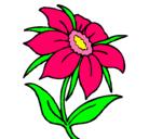 Dibujo Flor silvestre pintado por aliciag