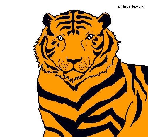 Dibujo de tigre pintado por jasmine en el d a - Tigre de jasmine ...
