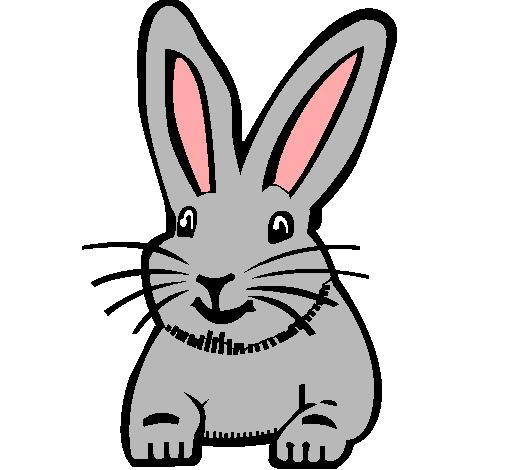 Dibujo de Conejo pintado por Luna en Dibujosnet el da 190810 a