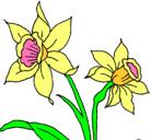 Dibujo Orquídea pintado por rosy