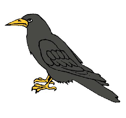 Dibujo de Cuervo pintado por Urraca en Dibujos.net el día ...