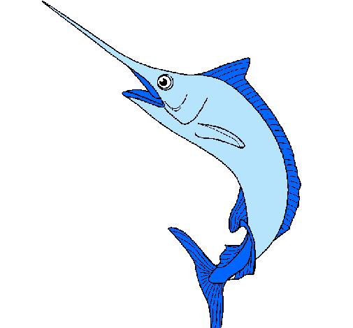 Dibujo de Pez espada pintado por Ioritz10 en Dibujosnet el da 24