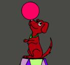 Dibujo Perro de circo pintado por nto