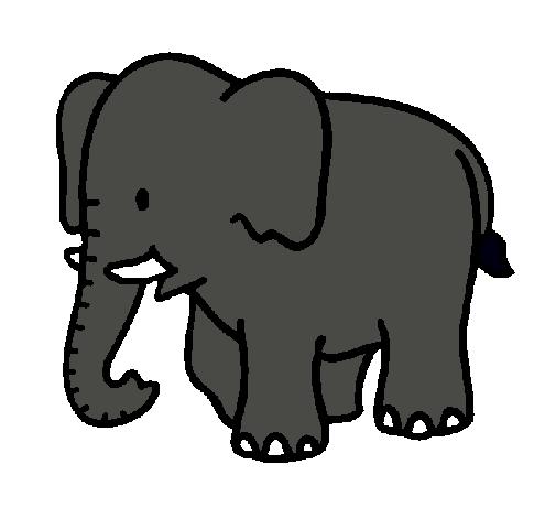 Dibujo de Elefante bebe pintado por Srelefantin en Dibujosnet el