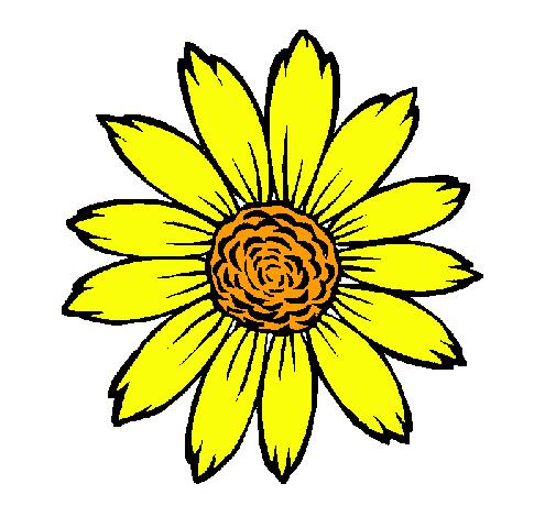 Dibujo de Girasol pintado por Flor en Dibujosnet el da 011010