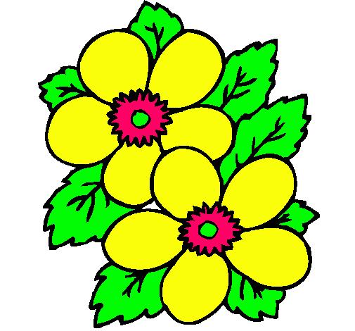 Dibujo de Flores pintado por Flor en Dibujosnet el da 011010 a
