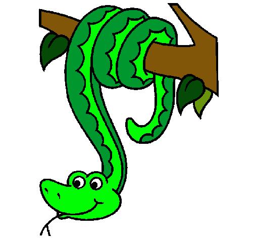 Dibujo de Serpiente colgada de un árbol pintado por Snake en ...