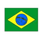 Dibujo Brasil pintado por brazil