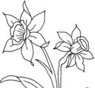 Dibujo Orquídea pintado por KLAU