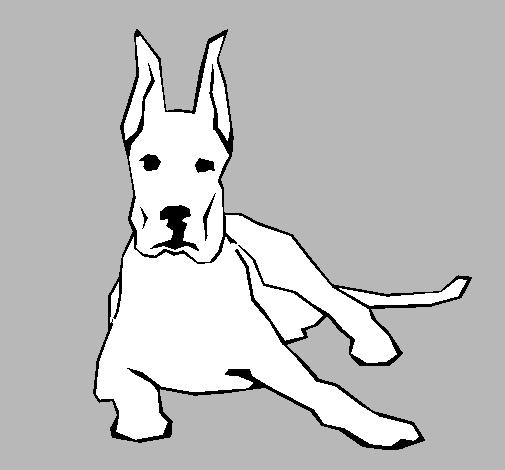 Dibujo de Gran Dans tumbado pintado por Oscar456 en Dibujosnet