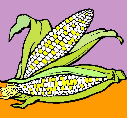 Dibujo de Mazorca de maíz pintado por Elote en Dibujos.net el día ...