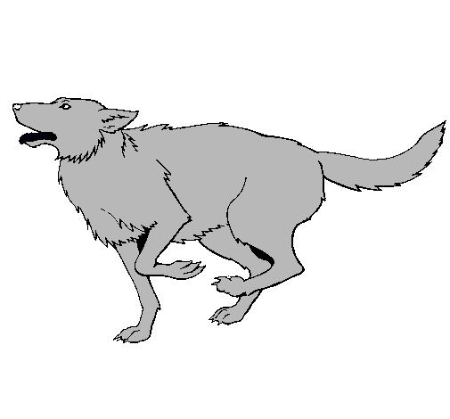 Dibujo de Perro corriendo pintado por Lobos en Dibujosnet el da