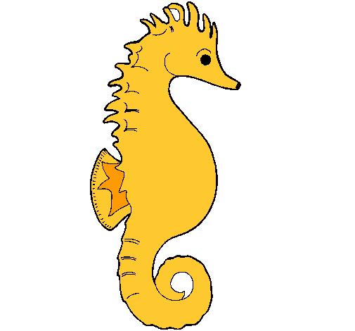 Dibujo de Caballito de mar pintado por Wandita409 en Dibujos.net el ...