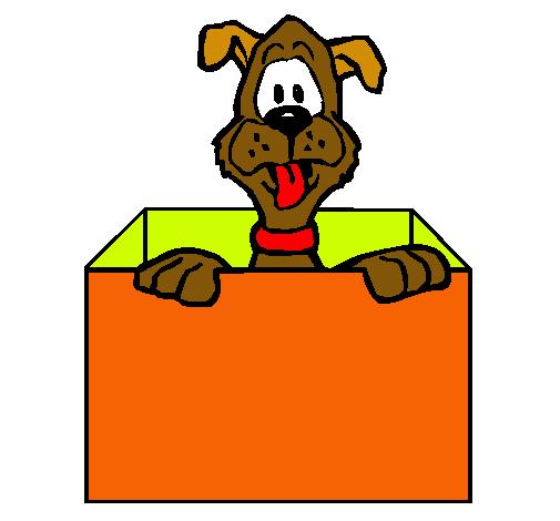 Dibujo de perro dentro de caja pintado por sophia en for Imagenes de fuera de lugar