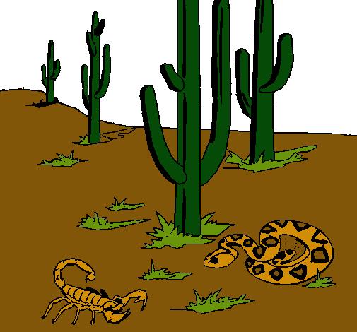 Dibujo de Desierto pintado por Eduardo en Dibujos.net el día 17-11 ...
