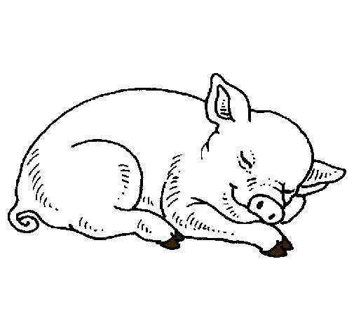 Dibujo De Cerdo Pintado Por Dani1021 En Dibujos Net El Día
