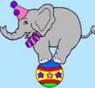 Dibujo Elefante encima de una pelota pintado por ZTAR