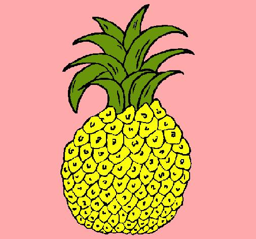 Dibujo de pia pintado por Frutas en Dibujosnet el da 131210 a