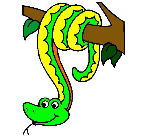 Dibujo de Serpiente colgada de un rbol pintado por