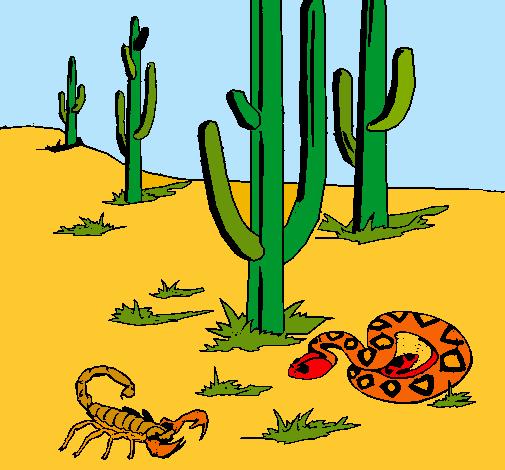Dibujo de Desierto pintado por Josma en Dibujosnet el da 0801