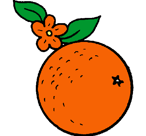 Dibujo de naranja pintado por Abydav en Dibujosnet el da 1301