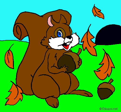 Dibujo de Ardilla pintado por Bmjh en Dibujosnet el da 060211