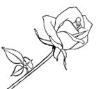 Dibujo Rosa pintado por dibujo