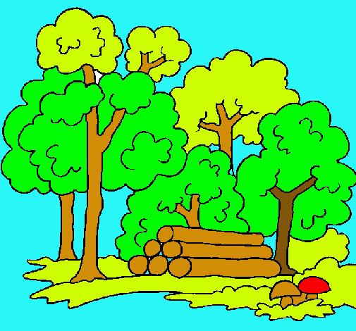 Dibujo de Bosque pintado por Naturaleza en Dibujosnet el da 25