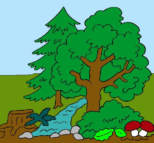 Dibujo de Bosque pintado por Chantal en Dibujos.net el día 22-02 ...