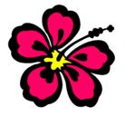 Dibujo Flor surfera pintado por flores