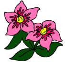Dibujo Flores pintado por virtudes