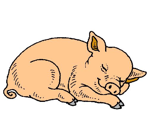 Dibujo de Cerdo durmiendo pintado por Franmario en Dibujosnet el