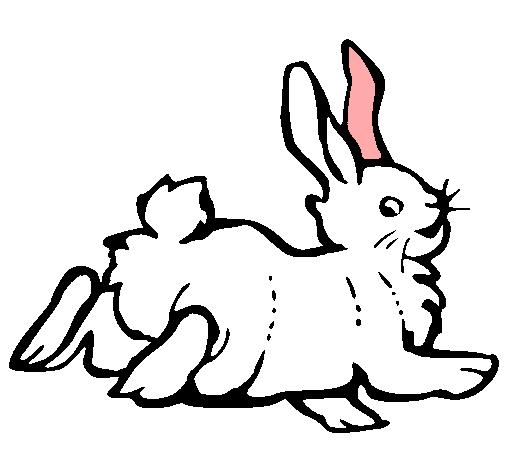 Dibujo de Conejo contento pintado por Mono en Dibujosnet el da