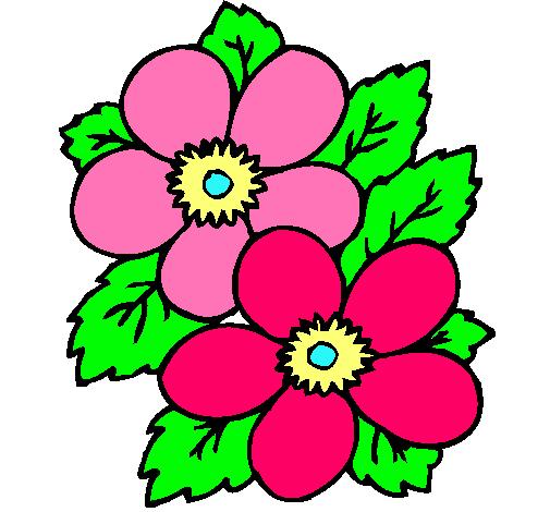Dibujo de Flores pintado por Rosas en Dibujosnet el da 010411
