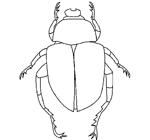 Dibujo de Escarabajo pintado por Pomito84 en Dibujos.net el día 03 ...