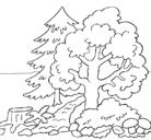 Dibujo Bosque pintado por bastidas