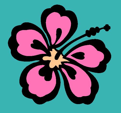 Dibujo de Flor surfera pintado por Hawaiano en Dibujosnet el da