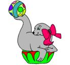 Dibujo Foca jugando a la pelota pintado por foca