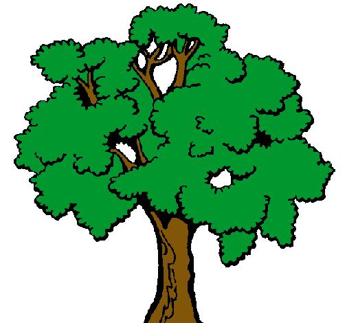 Dibujo de rbol pintado por Arbol en Dibujosnet el da 280411 a