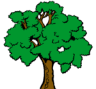 Dibujo Árbol pintado por arbol