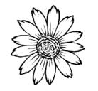 Dibujo Girasol pintado por Girasol