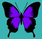 Dibujo Mariposa con alas negras pintado por violeta_1000