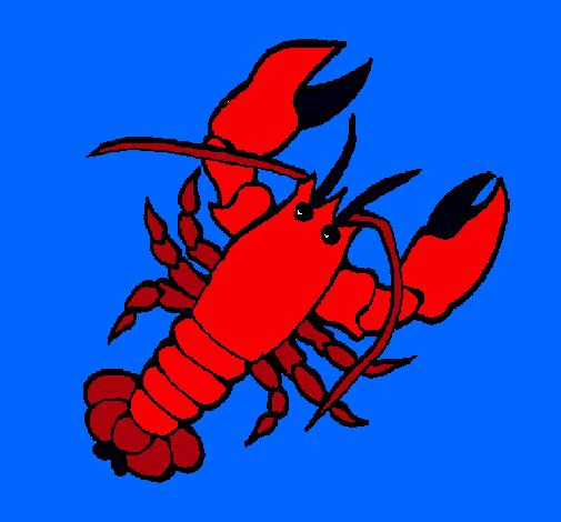 Resultado de imagen para dibujo de langosta