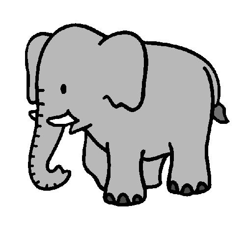 Dibujo de Elefante bebe pintado por Colorida en Dibujos.net el día ...