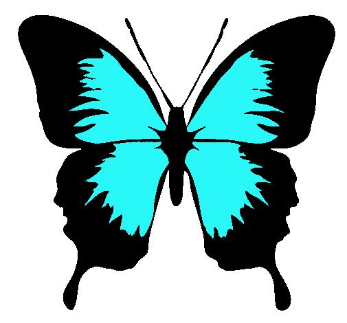 Dibujo de Mariposa con alas negras pintado por Ceilia en Dibujos