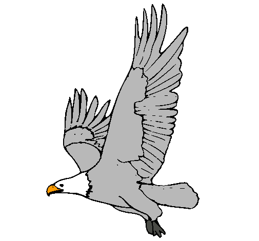 Dibujo de guila volando pintado por Anomino en Dibujosnet el da
