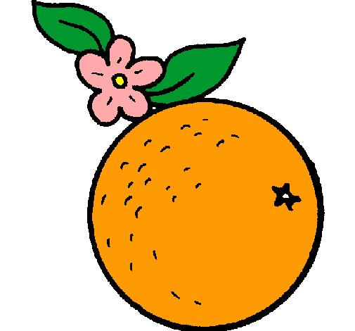 Dibujo de naranja pintado por Ollas en Dibujosnet el da 230811