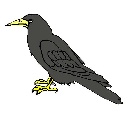 Dibujo de Cuervo pintado por Ian1105 en Dibujos.net el día 27-11 ...