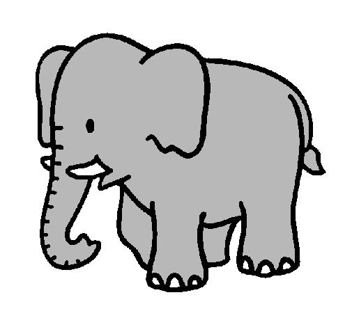 Dibujo de Elefante bebe pintado por Chiquita20 en Dibujosnet el