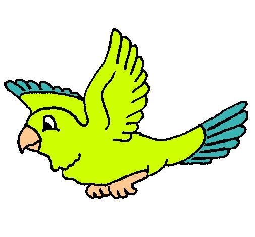 Dibujo de Periquito pintado por Perico en Dibujos.net el día 05-02 ...